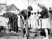 На Воложинщине появились современные «тимуровцы»