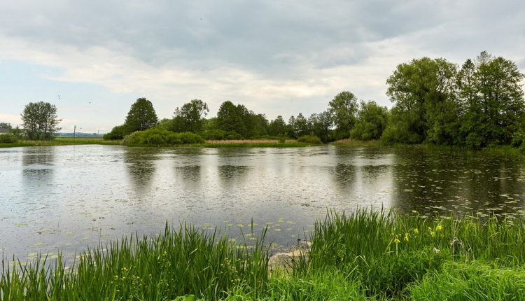 В Городьках в озере утонул школьник